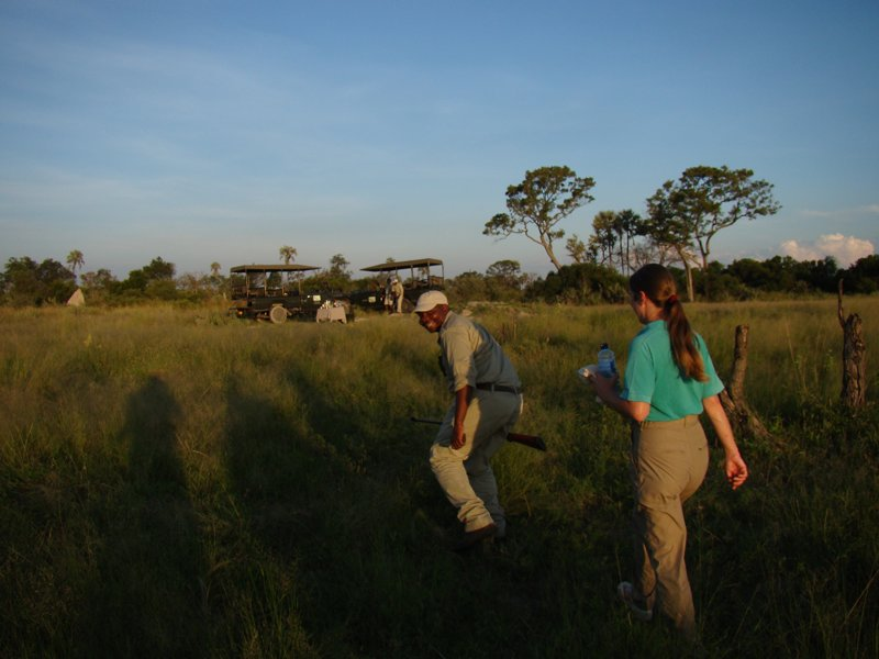Walking safari Africa
